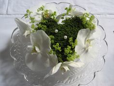 Ringkissen aus Moos und weißen Blumen
