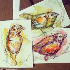 watercolor warm-up.  (each student-different bird-drawn from a hat)
