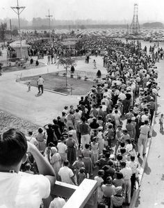 The line to purchase Disneyland tickets on the park's opening day, July 17, 1955.  when Disney was good...