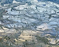 Artist of the Day  DAVID BURDENY  Rice Terraces, (Laohuzui I), Yunnan, China,  2013 From the series Saudade épreuve couleur / C-print