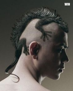 Hair as art!  I wonder how long it took the stylist to do this cut?