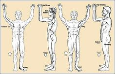 Tracing the meridians of the body, starting from the triangles. For more information, look up Donna Eden.