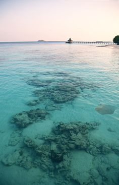 The stunning see-through waters of Turks & Caicos.