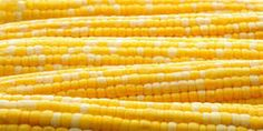 Balamurugan Traders #exports the supreme quality of Yellow #Maize from India. Contact them for finest quality and hygienic transport. http://www.balamurugantraders.com/aboutus.html