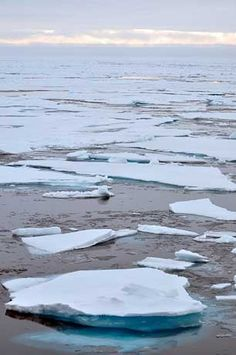 """Destabilization of Arctic Sea Ice Would Be """"Game Over"""" for Climate"""
