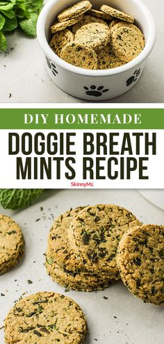 Dogs can get bad breath from plaque build-up caused by infrequent brushing insufficient water intake or just from the foods they eat. Our simple DIY doggie breath mints will help get rid of your dogs bad breath no matter the reason! Dog Biscuit Recipes, Dog Treat Recipes, Dog Food Recipes, Healthy Recipes, Healthy Pets, Healthy Dog Treats, Breath Mint Recipe, Bad Dog Breath, Smelly Dog