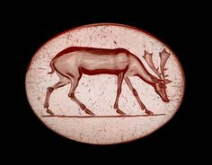 Scarboid gem with grazing deer | Museum of Fine Arts, Boston