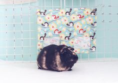 Guinea Pig Hay Bag / Guinea Pig Hay Pouch / Hay Sack / Mess Free Cage / Chickadees and Robins