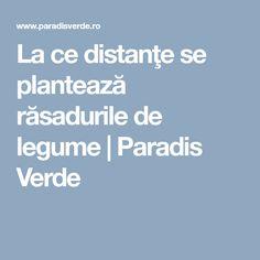 La ce distanţe se plantează răsadurile de legume | Paradis Verde Paradis