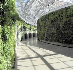 Photo Gallery: Longwood Gardens Green Wall