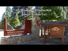 60 Seconds of a #OneHourWalk – Zumwalt Meadows Trail - YouTube