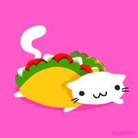 Cindy Suen animation cat food pink