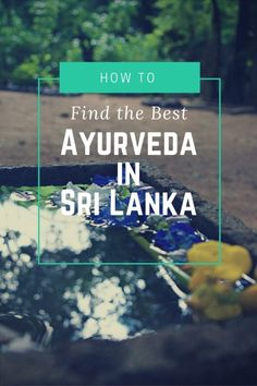 How to Find the Best Ayurveda in Sri Lanka