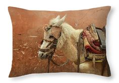 Ethnic Pillow Donkey Pack Mule Sand Brown Morocco by StudioYuki