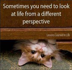 Manchmal müssen wir einfach die Perspektive wechseln - und schon sieht alles ganz anders aus!