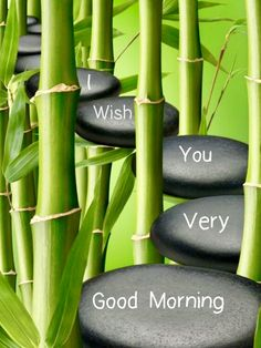 Morning Prayer Quotes, Happy Morning Quotes, Good Morning Prayer, Morning Greetings Quotes, Morning Blessings, Good Morning Messages, Morning Prayers, Good Morning Wishes, Good Morning Wednesday