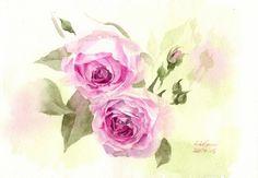 Watercolor Rose, Watercolor Paintings, Pearl Wallpaper, Vintage Paintings, Beautiful Rose Flowers, Pink Roses, Gift Tags, Board, Gifts