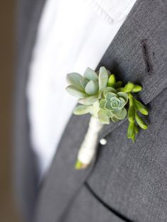 DIY boutonnieres http://www.thesweetestoccasion.com/2014/02/diy-succulent-boutonnieres/