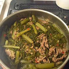 甘辛く味付け最後に少しごま油をかけて香りづけしました。 ふき今が旬ですね - 3件のもぐもぐ - ふきと刻み昆布と牛バラ肉の煮物 by stvalentine78