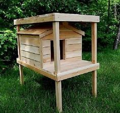 Outdoor Cat House For Summer