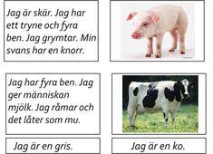 Easy Science Experiments, Montessori, Activities For Kids, Kindergarten, Preschool, Shapes, Education, Children, Animals