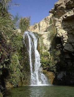 Waterfall in the Ein Gedi National Park, located in the Dead Sea Valley.