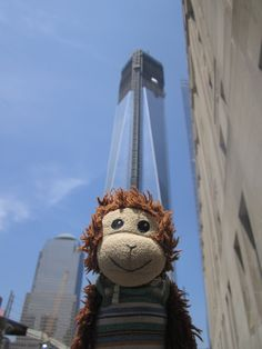Peps wants to know if he can climb the Freedom Tower. I think he's confusing it with the Empire State building. He has seen lots of clips from King Kong. #Pepe
