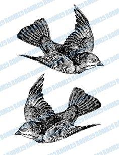 DESCARGA instantánea volando pájaro ilustración Vintage por room29