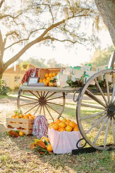 citrus favor station | Sunglow Photography