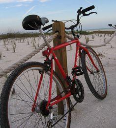 Bike riding - Sanibel Island--22 miles of bike trails that wind through lush mangrove forest.  You'll pass by cute shops, restaurants too. Biker's paradise!