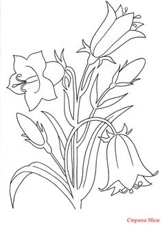Полевые цветы Embroidery Transfers, Hand Embroidery Designs, Vintage Embroidery, Embroidery Patterns, Flower Line Drawings, Flower Sketches, Outline Drawings, Spring Coloring Pages, Colouring Pages