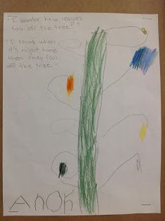 Wonders in Kindergarten: Leaf Inquiry