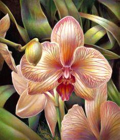 Retratos de Orquídeas en detalle cercano pintados al óleo - Retratos y Arte por Nancy Tilles