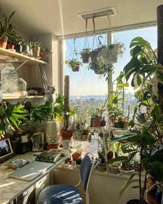 Decoration Inspiration, Room Inspiration, Decor Ideas, Room Ideas Bedroom, Bedroom Decor, Study Room Decor, Decor Room, Room With Plants, Plant Rooms
