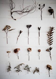flower wall | pia jane bijkerk