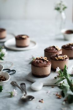 Raw Vegan Chocolate Hazelnut Ice Cream Cakes made in the Vitamix