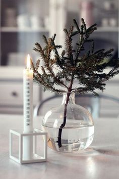 simple christmas- love the branch in a vase! Noel Christmas, Merry Little Christmas, Scandinavian Christmas, Simple Christmas, All Things Christmas, Winter Christmas, Christmas Crafts, Christmas Decorations, Christmas Calendar