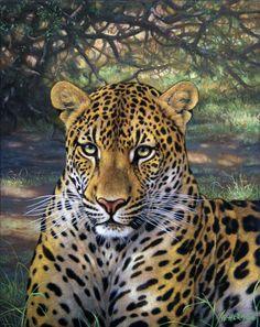 Leopard / Gabriel Hermida