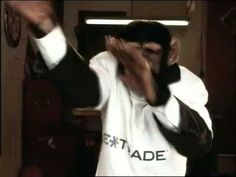 "ETrade ""Monkey"" super bowl commercial. Funny commercial that seems random but plays it off with the end line."