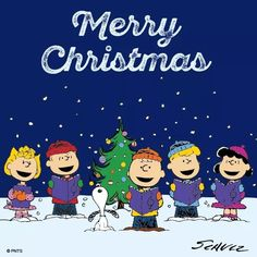 A Merry Christmas To All! Merry Christmas Charlie Brown, Merry Christmas Happy Holidays, Peanuts Christmas, Charlie Brown And Snoopy, Christmas Love, Vintage Christmas, Christmas Scenes, Peanuts Cartoon, Peanuts Snoopy