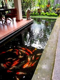 56 Backyard Ponds And Water Garden Landscaping Ideas 56 Backyard Ponds And Water Garden Landscaping IdeasDo you want a fish pond in your back garden? Pool ideas this page shows various styles f Backyard Water Feature, Ponds Backyard, Garden Pool, Water Garden, Small Fish Pond, Koi Fish Pond, Fish Ponds, Koi Pond Design, Landscape Design