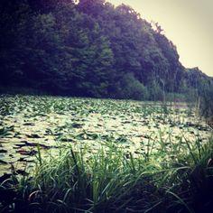 Lacul lui Eminescu (Ipotești, jud. Botoșani)