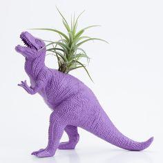 Dinosaur Planter with Air plant- Dorm Room Geekery Decoration. $20.00, via Etsy.