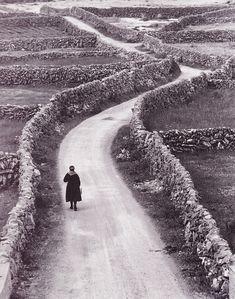 Ireland's stone fences