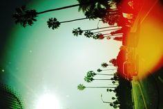 California - instagrammed 2011