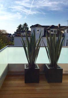 g nstige k nstliche sukkulenten real touch landschaft lotus pflanzen gras dekorative k nstliche. Black Bedroom Furniture Sets. Home Design Ideas