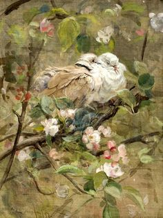 Doves and Apple Blossom - Counted cross stitch pattern in PDF format by Maxispatterns on Etsy