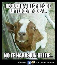 Selfie                                                       …