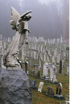 """All Souls Cemetery.    """"Though they sink through the sea they shall rise again. Though lovers be lost love shall not; And death shall have no dominion.""""  -Dylan Thomas"""