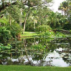 Atlanta Botanical Gardens   McKee Botanical Garden, Vero Beach, we visited the dinosaurs here!
